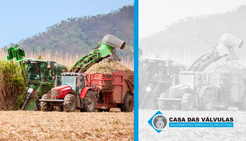 Biomassa e geração de energia: indústria da cana-de-açúcar vê oportunidades