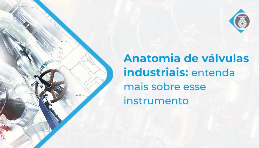 Anatomia de válvulas industriais: entenda mais sobre esse instrumento